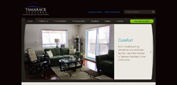 telnet-website-design-ottawa
